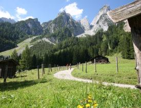 Landschaft_Gosau_Dachstein_Sc) STMG Christian Parzer
