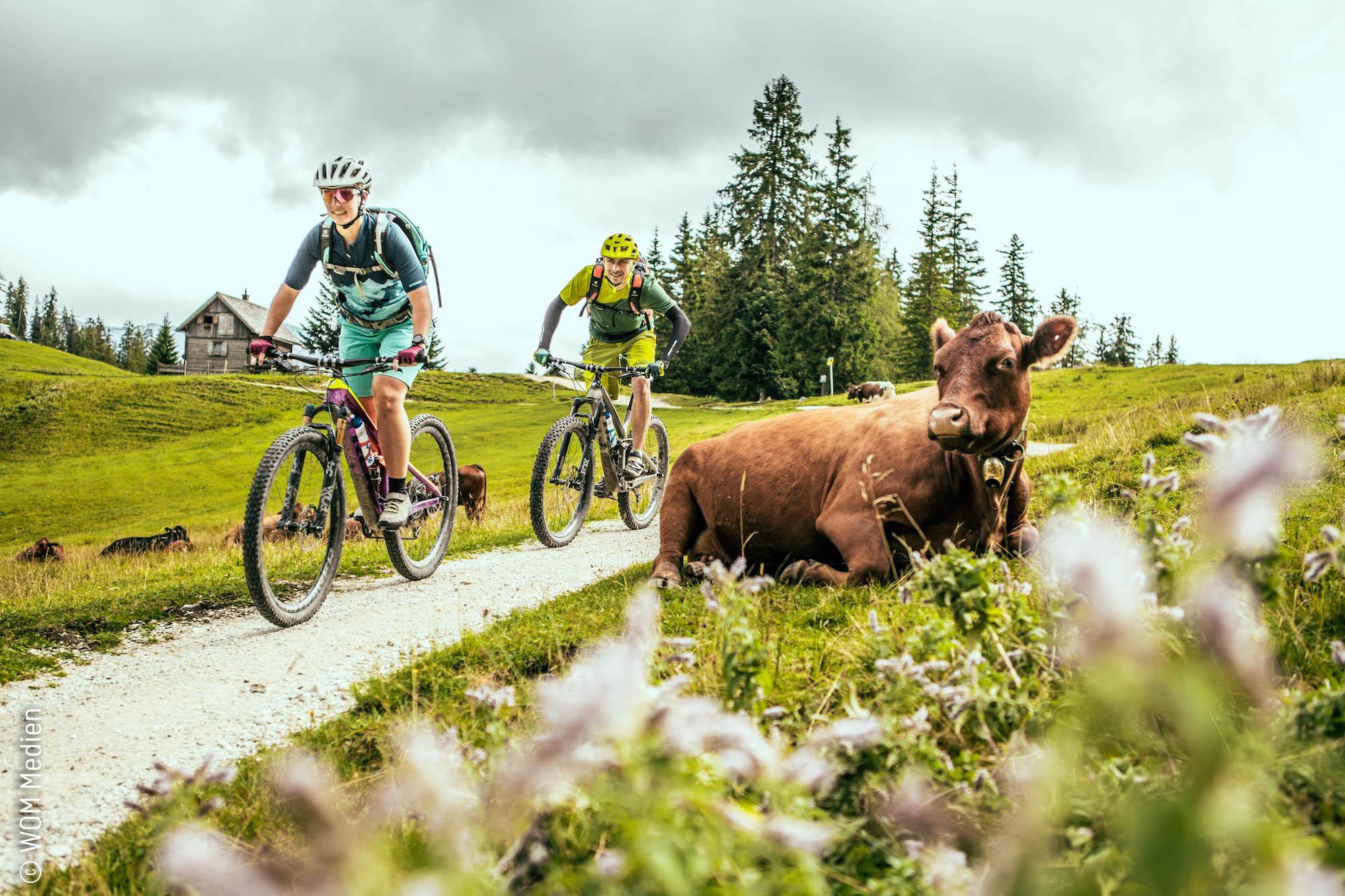 Bike-Urlaub im Ausseerland-Salzkammergut