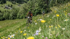 RACES2BE// Alpentour-Trophy 16.-19. September 2021