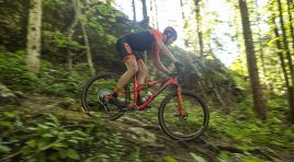 3 KTM Mountainbikes im Portrait